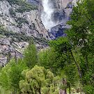 Merced River and Bridalveil Waterfall in Yosemite by AntonyMeadley