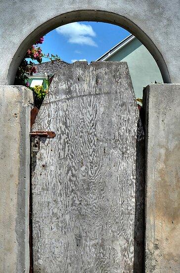 The Back Door... by 242Digital