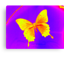 butterfly photograph from London Canvas Print