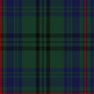 10010 Walker Hunting Clan/Family Tartan Fabric Print Ipad Case by Detnecs2013
