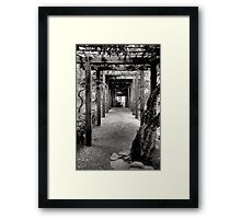 Vine Covered Path Framed Print