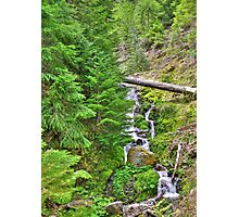 no name creek Photographic Print