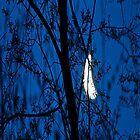 Dawn moon 2, Iphone case by Carolyn Clark