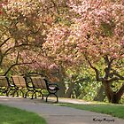 Under the Apple Blossoms by KatMagic Photography