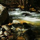 Cobble Rock Creek by Nazareth
