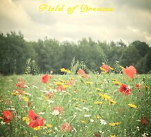 Field Of Dreams  by Nicola  Pearson