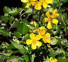 Morgallana flowers by Atman Victor