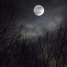 Moonlight 2 by R. Oakes