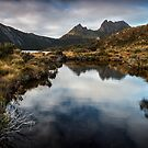 Cradle Mountain Reflections by Mieke Boynton