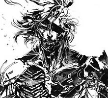 Raiden Metal Gear Rising: Revengeance by EvilYouth