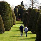 Lovers Walk by John Dalkin