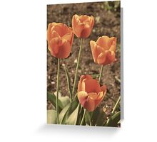 One Spring Morning Greeting Card