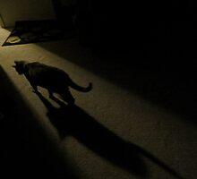 Beware...The Night Stalker by trueblvr