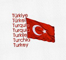 Flying The Flag For Turkey by Ron Marton