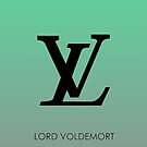 Lord Voldemort iPhone Cover/Case by Harry Martin