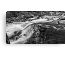 The Rivers Muscle Canvas Print