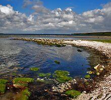 On the edge of Lake Grevelingen. by Adri  Padmos