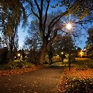 Early Morning inSt David's Park, Hobart, Tasmania #2 by Chris Cobern