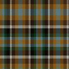 02335 Clark County, Nevada District Tartan Fabric Print Iphone Case by Detnecs2013