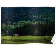 Cabin at Cowichan Poster