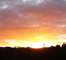Sunrise in winter Kilmore East VIC Australia by Margaret Morgan (Watkins)