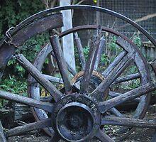 Kelly Wheel by NaomisBroom