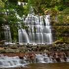 Liffey Falls again! by Karine Radcliffe