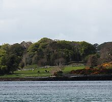 Portaferry Castle Landscape by takoda93