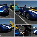 1965 Shelby Daytona Coupe Replica by TeeMack