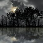 2880 by peter holme III