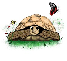 Fun Cartoon Tortoise Art by LeahG by LeahG Artist