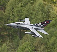 Dambusters 70 Years On - Flypast At The Derwent Dam - 4 by Colin  Williams Photography