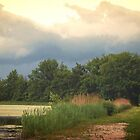 ABOUT TO RAIN by Marilyn Grimble