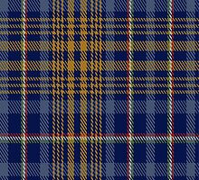 02371 de Baseggio (Golden Bones) Tartan Fabric Print Iphone Case by Detnecs2013