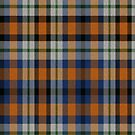 02374 Westchester County, New York District Tartan Fabric Print Iphone Case by Detnecs2013