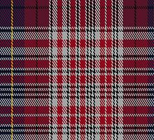 02378 Debian Tartan Fabric Print Iphone Case by Detnecs2013