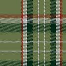 02380 Deer Park (Loton) Tartan Fabric Print Iphone Case by Detnecs2013