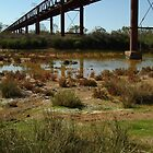 Joe Mortelliti Gallery - Ruins of a railway bridge, Old Ghan Railway, South Australia. by thisisaustralia