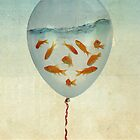 balloon fish 02 by vinpez