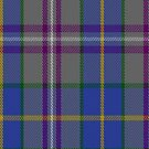02384 Deeside Plaid (Taobh Dhi) District Tartan Fabric Print Iphone Case by Detnecs2013