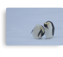 Penguins in a Snowstorm Canvas Print