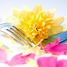 silver knife and fork isolated with dahlia and rose petals by morrbyte
