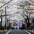 Shibuya Sakura Dori (Street) by kianhwee