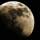 Dark Moon by Don Marshall