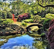 Japanese tea garden, Bontanical Gardens, Brooklyn, New York by fauselr