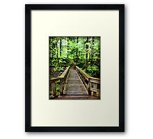 Benson Creek Bridge Framed Print