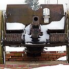 Cold Cannon by WildestArt