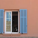 French Window by lindsaykachic