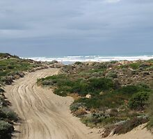 4WD Track to Goolwa Beach, south coast, South Australia. by Rita Blom