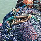 fishing nets by Anne Scantlebury